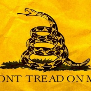 Don-T-Tread-On-Me-660x350-1444039663