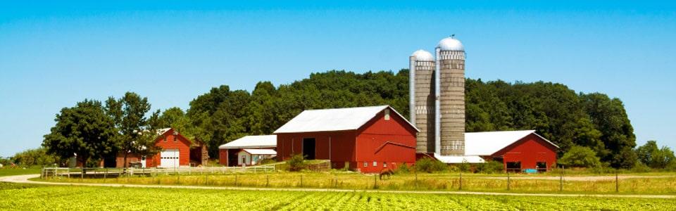 farm_0