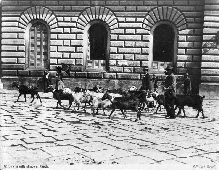 Brogi,_Giacomo_(1822-1881)_-_n._12_-_La_vita_nelle_strade_in_Napoli