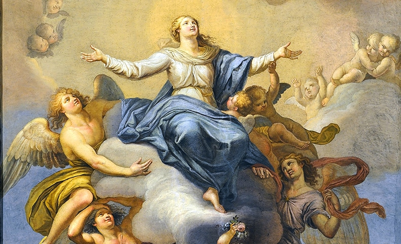 On December 8, 1854, Pope Pius IX defined the dogma of the Immaculate  Conception, the doctrine that God the Father chose and prepared a Mother  for his ...